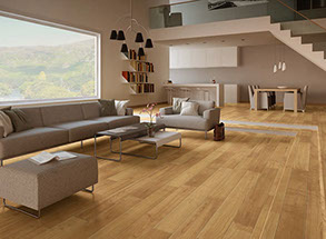 Providing Laminate U0026 Hardwood Flooring Refinishing, Laminate U0026 Hardwood  Floors Restoration And Laminate U0026 Hardwood Floors Repair For Central And  South ...